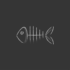 Fish skeleton. Drawn in chalk icon.