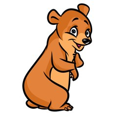 Good brown bear cartoon illustration   image animal character