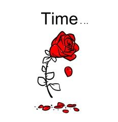 Rose wilting lifetime cartoon contour illustration style black red