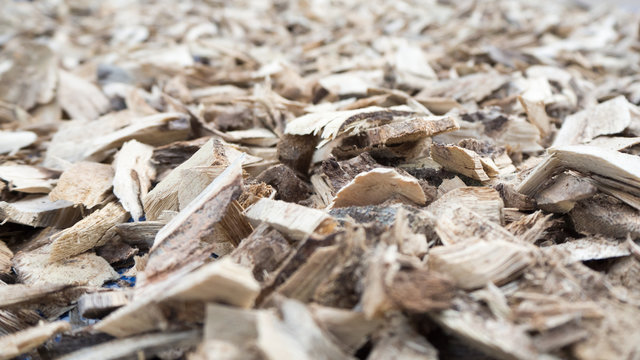 Dry barks of herbs.