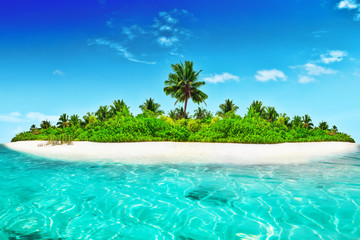Obraz Whole tropical island within atoll in tropical Ocean. - fototapety do salonu