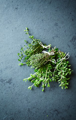 Assorted fresh herbs on a stone background