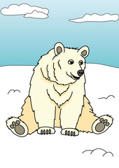 Coloring page - Polar bear