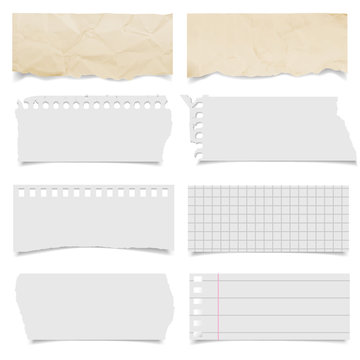 collection of various ripped pieces of paper on white background