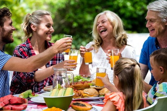 Family toasting drinks while having lunch at lawn