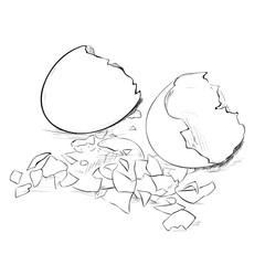 Vector sketch of broken eggs and eggshell