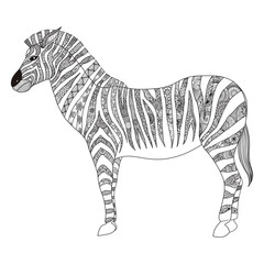 Zebra zentangle stylized for T- Shirt design, sign, poster, coloring book for adult and design element