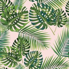 Palm Tropical leaves seamless pattern. Vector illustration.