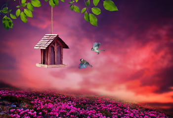 Little Birdhouse in Spring with blossom flower landscape