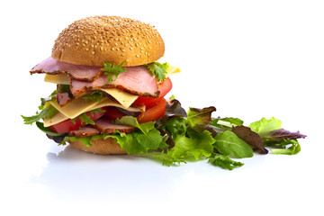 burger and salad on white background