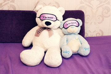 couple teddy bears on violet sofa