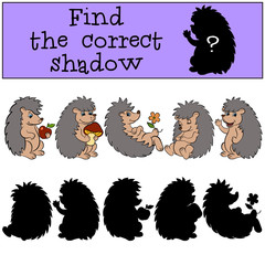 Children games: Find the correct shadow. Hedgehog.