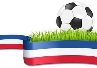 Fussball auf Rasen mit französischer Banderole