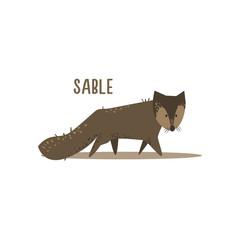 Sable Vector Illustration