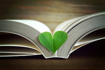 Opened book and heart