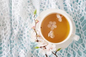 Spring herbal tea with cherry blossom