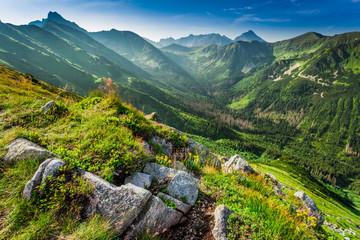 Dawn in the Tatras mountains in summer, Poland