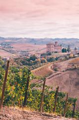 Wall Mural - Grinzane Cavour Castle in Langhe vineyards of Piedmont