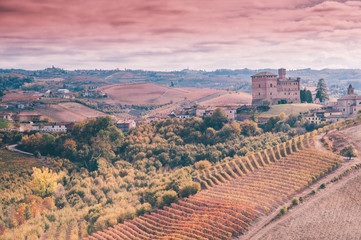Wall Mural - Grinzane Cavour Castle in Langhe vineyards of Piedmont