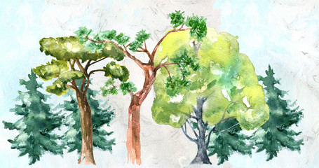 Tree.  Watercolor drawing. Can be used for printing and design.