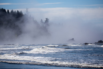 Sea stacks at ruby beach olympic national park in fog