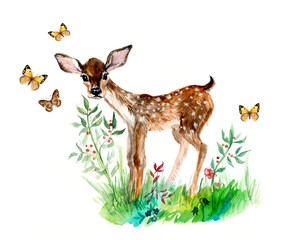 Deer baby with butterflies and flowers. Hand drawn watercolor illustration.