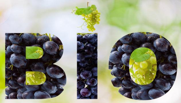 raisins bio
