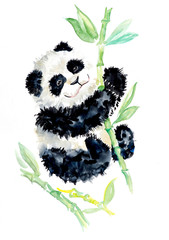 Panda with bamboo. Happy bear background, watercolor composition. Watercolor hand drawn illustration