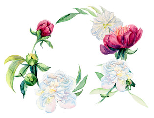 Frame from flowers. Bouquet of  peony. Flower backdrop. Decoration with blooming peony. Place for your text. Watercolor hand drawn illustration