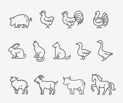 Farm animals, thin line style, flat design