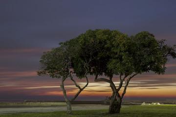 photo sunset (Sunset on the Mediterranean)