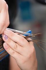 Hair salon. Hairdresser cutting hair