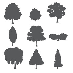 Vector natural set of forest trees.