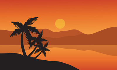 Tree palm trees silhouette on sunset tropical beach