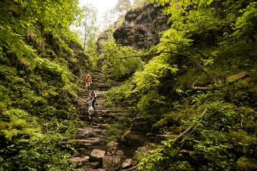 Hiker climbing rocks in forest