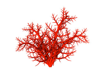 3D Illustration Red Coral on White