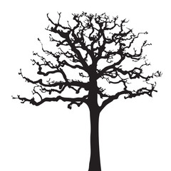 Tree twig silhouette vector