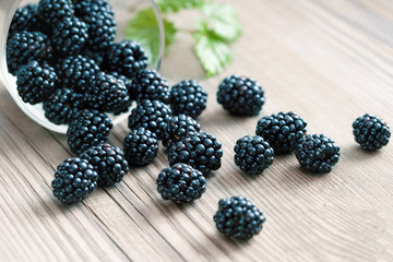 Blackberries in bowl on wooden background. Selective focus, high resolution product. Harvest Concept