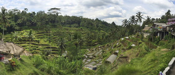 Rural rice terraces on hillside