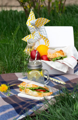Healthy picnic for a summer day with croissants, fresh fruit and sandwiches and lemonade