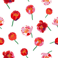 Seamless floral  background. Isolated red flowers on white background. Vector illustration.