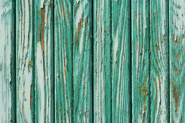 Green textural wooden old background. Green wooden wall close up for your design. Green painted old wall