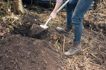 Young woman digging hole in garden