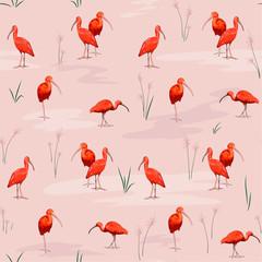 Scarlet ibises seamless texture