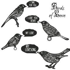 Birds singing lovesongs