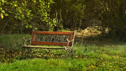 Banca solitaria en medio del bosque