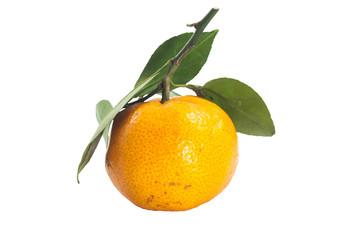 Single thai orange fruit with green leaf
