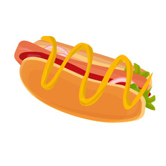 hot dog vector illustration, isolated on white background
