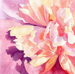 art floral watercolor pink peonies