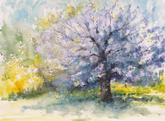 Hand drawn blooming cherry tree.Picture created with watercolors
